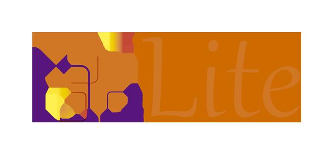 logo_CapSys_Web